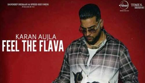Feel The Flava lyrics