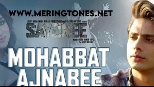 Mohabbat Ajnabee Lyrics